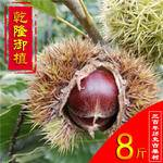 农家自产邳州陈楼板栗8斤装(预售9月5日发货)