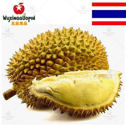 【五星果品】泰国水果基地  金枕头榴莲  5斤左右