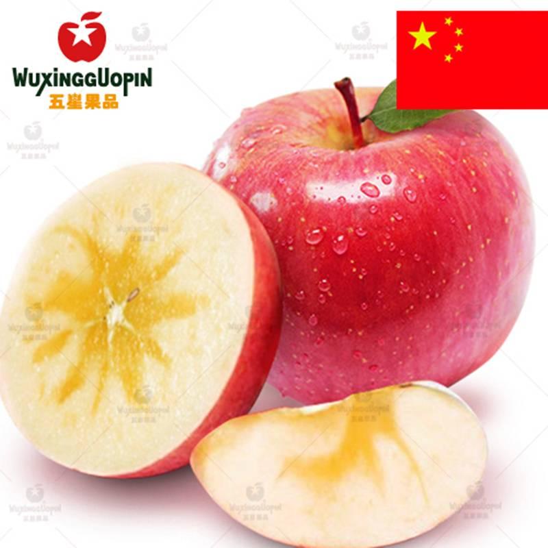 【五星果品】新疆产地  精选最大果 阿克苏冰糖心苹果5斤装