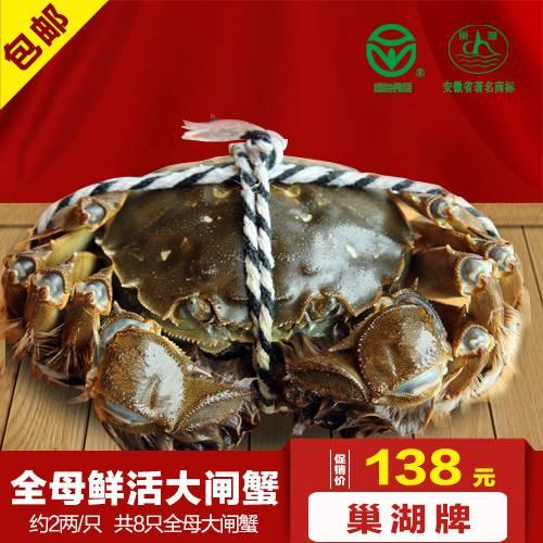 巢湖牌约2两/只全母大闸蟹8只礼盒装