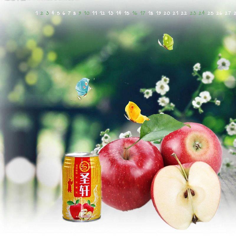 圣轩果醋 解酒护肝/美容养颜 酸甜可口  果醋  280ml*8罐装